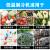 小型冷庫分体式冷冻机器1匹2 p 3 p 4 p 5匹冷冻果物と野菜の鮮花分体式大5匹の鮮度保持機0-18度220 V